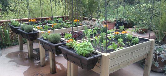curso de diseÑo de jardines por ordenador - mantenimiento de